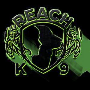 REACH Swag