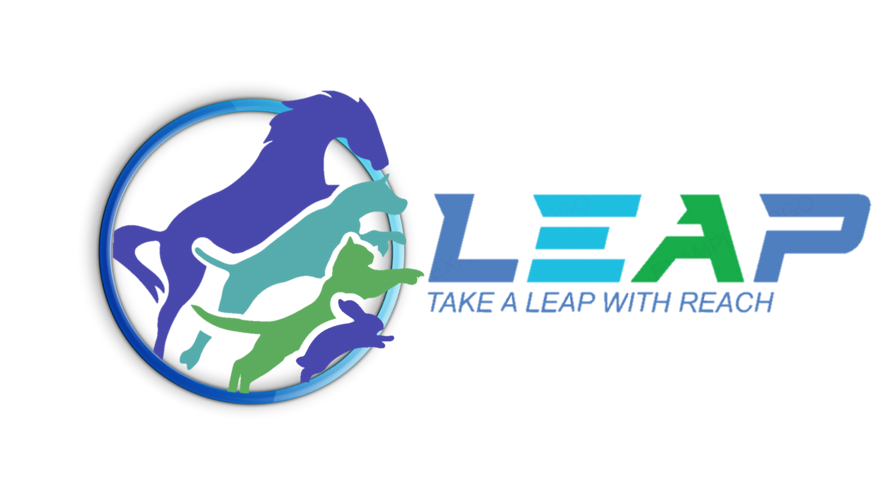 Take A LEAP with REACH!