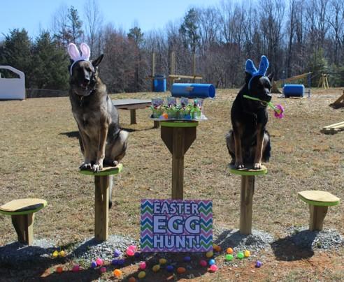 2018 Egg Hunt