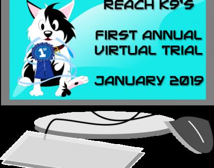 2019 Virtual Trial